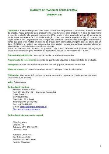 Embrapa 041 - Embrapa Suínos e Aves