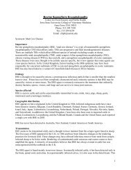 BSE Fact Sheet - Iowa Department of Agriculture and Land ...
