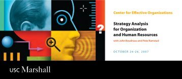 Strategy Analysis for Organization and Human Resources