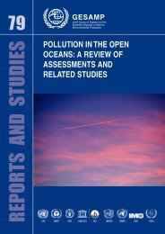 POLLUTION IN THE OPEN OCEANS: A REVIEW OF ... - GESAMP
