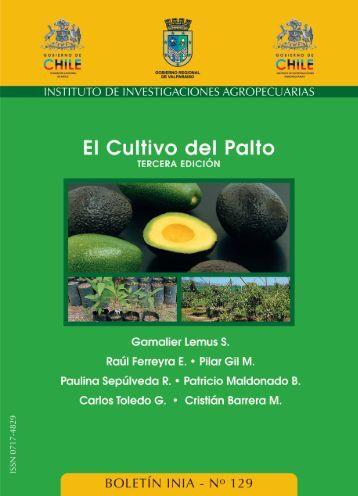 El cultivo del palto. Tercera edición. Boletín INIA 129 ... - Platina - INIA