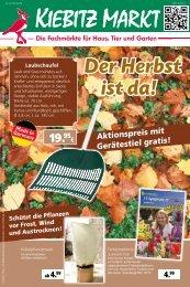 Der Herbst ist da! - Kiebitzmarkt