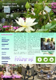 November-2014-wyee-nursery-newsletter