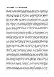 Sesamstraße und Karpfenangeln - M+M  Baits