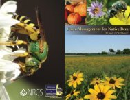Farm Management for Native Bees - Delaware Department of ...