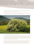 Doteky přírody - Moravskoslezský kraj - Page 4