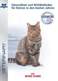 Gesundheit und Wohlbefinden für Katzen in den besten Jahren