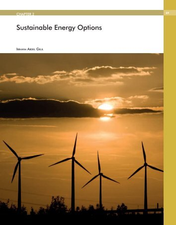 Sustainable Energy Options - Arab Forum for Environment and ...