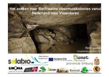 Het zoeken naar Bechsteins vleermuiskolonies vanuit Nederland ...