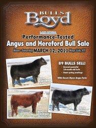 Angus and Hereford Bull Sale - Angus Journal