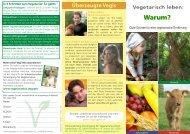 Faltblatt Vegi-Basics_Variante2_3 - Schweizerische Vereinigung für ...