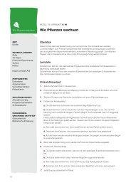 Wie Pflanzen wachsen - Plantscafe.net