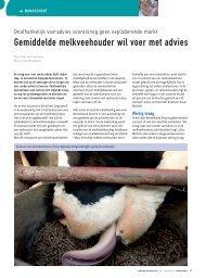 Gemiddelde melkveehouder wil voer met advies - Melkveebedrijf