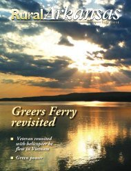 Greers Ferry revisited - Arkansas Electric Cooperative Corporation