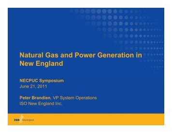 Natural Gas and Power Generation in New England