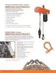 Maintenance - Columbus McKinnon Corporation - Page 4