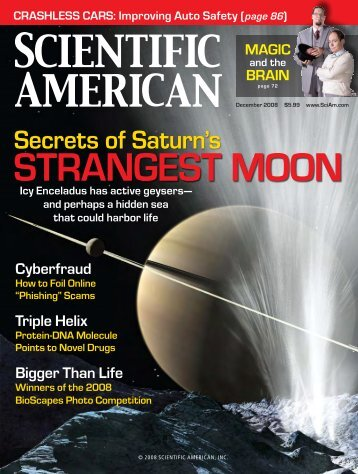 Scientific American - December 2008 - Laboratory of Visual ...