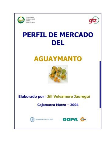 PERFIL DE MERCADO DEL AGUAYMANTO