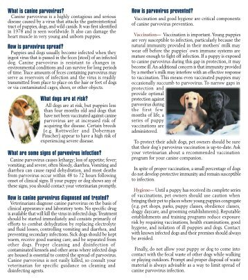 an analysis of the topic of canine parvovirus We figure that the dog's immune system needs support,  canine parvovirus (cpv) canine distemper virus  great reading on this topic.