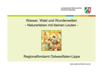 Andreas Roefs: Wasser, Wald und Wunderwelten - AWO