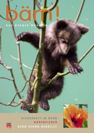 sicherheit in bern · bärenfieber · bern schön bebrillt - baernbox