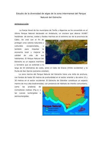 Estudio de la diversidad de algas de la zona intermareal ... - BioScripts
