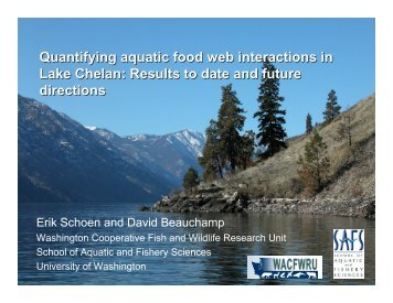 Quantifying aquatic food web interactions in Lake Chelan ...
