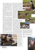 Teppiche und Gewebe aus Ostanatolien - SOV - Seite 5