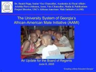 The University System of Georgia's African-American Male Initiative ...