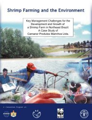 Key Management Challenges for the Development and Growth of a ...