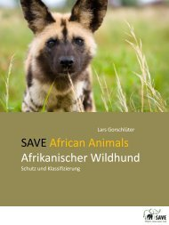 Afrikanischer Wildhund - SAVE Wildlife Conservation Fund