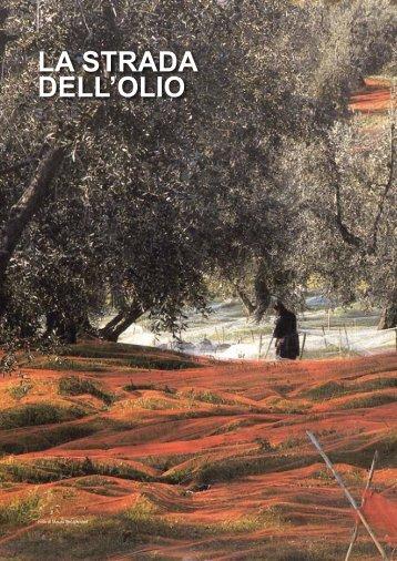 LA STRADA DELL'OLIO - TXTmagazine