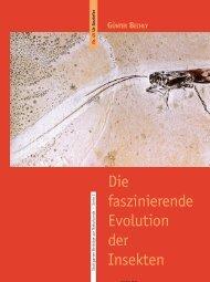Die faszinierende Evolution der Insekten - Staatliches Museum fuer ...