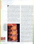 KATO, Gisele. A pintora do Brasil. Revista Bravo!, Setembro de 2008 - Page 3
