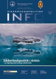 Sikkerhedspolitik i Arktis - en ligning med mange ubekendte