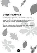 Tiere im Wald - Blattwerk Media - Page 5