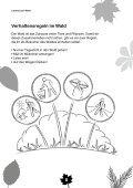 Tiere im Wald - Blattwerk Media - Page 6