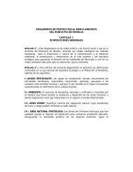 REGLAMENTO DE PROTECCIÓN AL MEDIO AMBIENTE DEL ...
