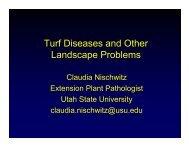 Turf Diseases and Other Landscape Problems - Utah Pests - Utah ...