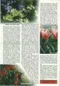 1/2008 - Botanischer Garten Erlangen - Seite 2