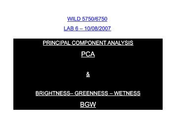 Brightness - Remote Sensing and GIS Laboratory