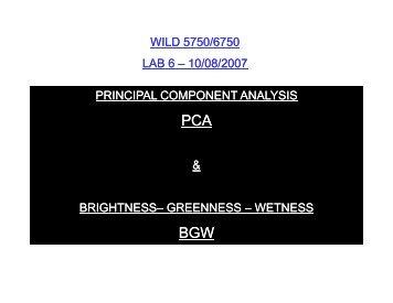 Brightness - Remote Sensing and GIS Laboratory