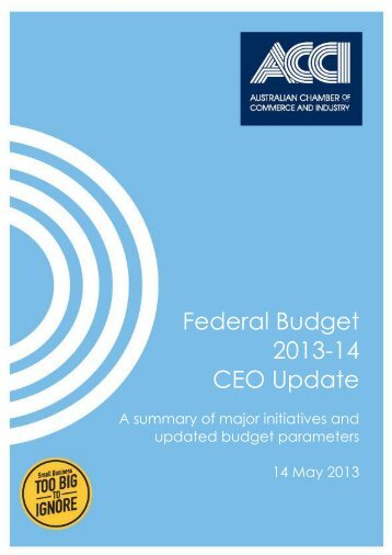 Federal Budget 2013-14 CEO Update - Business SA