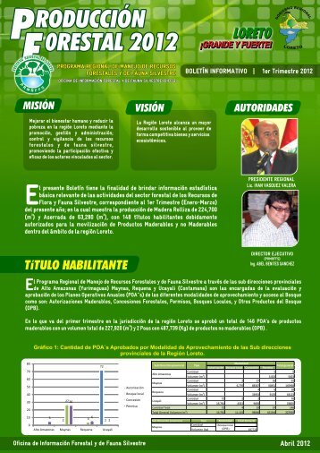 boletin I Trim - Gobierno Regional de Loreto