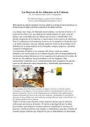 Las Reservas de los Alimentos en la Colmena