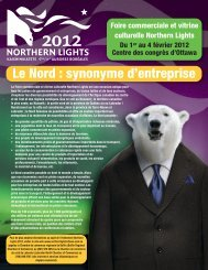 Le Nord : synonyme d'entreprise - Northern Lights