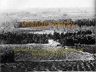 Bollens - Southern California Leadership Network