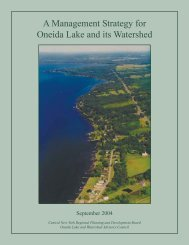 A Management Strategy for Oneida Lake and its ... - CNY RPDB Home