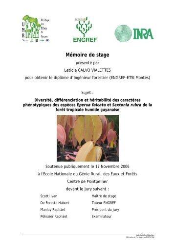 Mémoire de stage - UMR EcoFoG