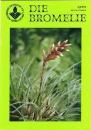 Tage der offenen Tür 1991 - Die deutsche Bromelien-Gesellschaft eV